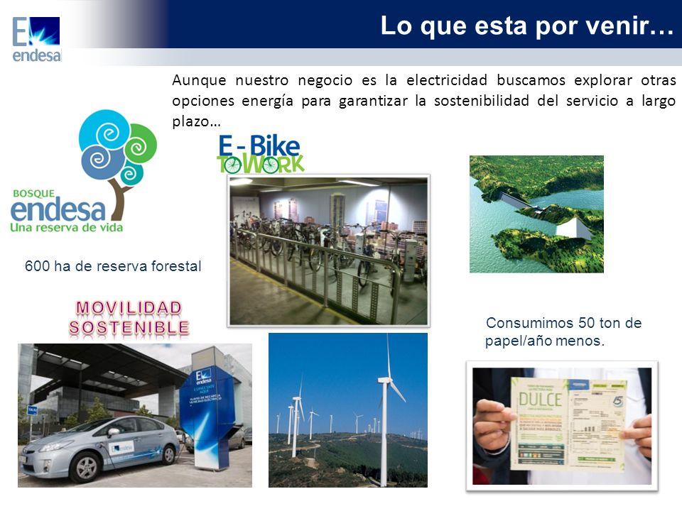 Lo que esta por venir… Aunque nuestro negocio es la electricidad buscamos explorar otras opciones energía para garantizar la sostenibilidad del servicio a largo plazo… 600 ha de reserva forestal Consumimos 50 ton de papel/año menos.
