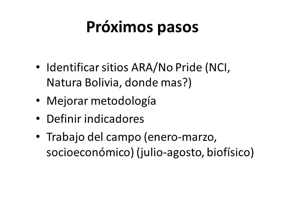 Próximos pasos Identificar sitios ARA/No Pride (NCI, Natura Bolivia, donde mas ) Mejorar metodología Definir indicadores Trabajo del campo (enero-marzo, socioeconómico) (julio-agosto, biofísico)