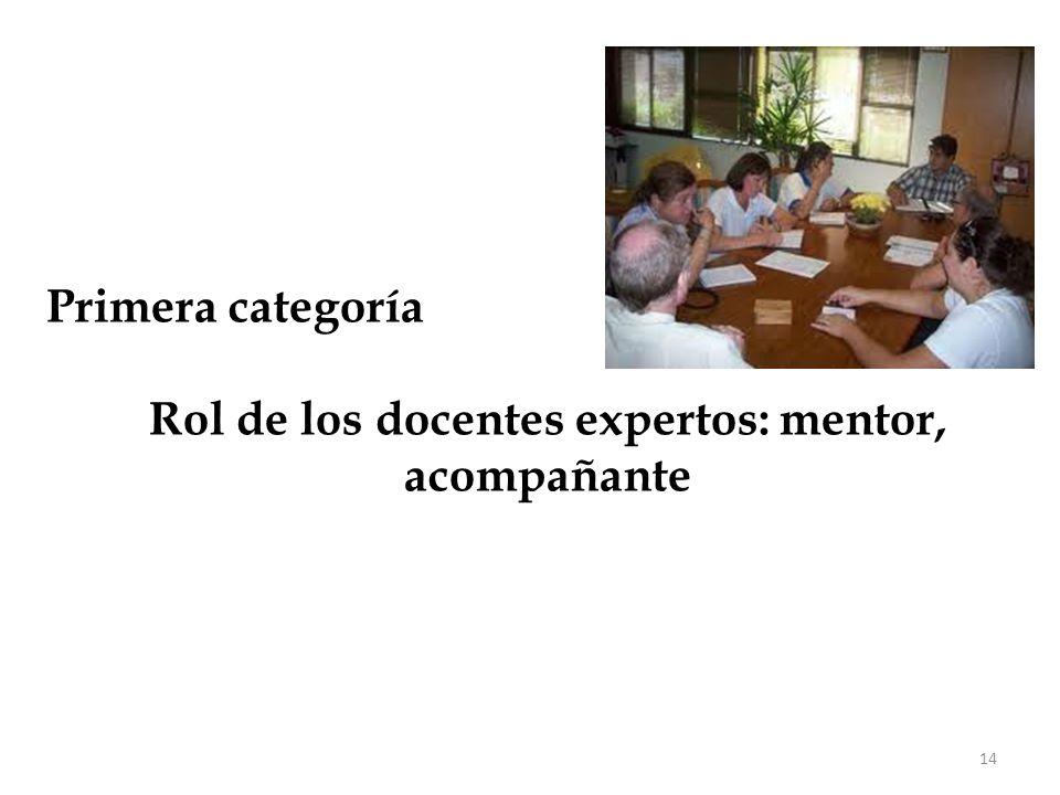 14 Primera categoría Rol de los docentes expertos: mentor, acompañante