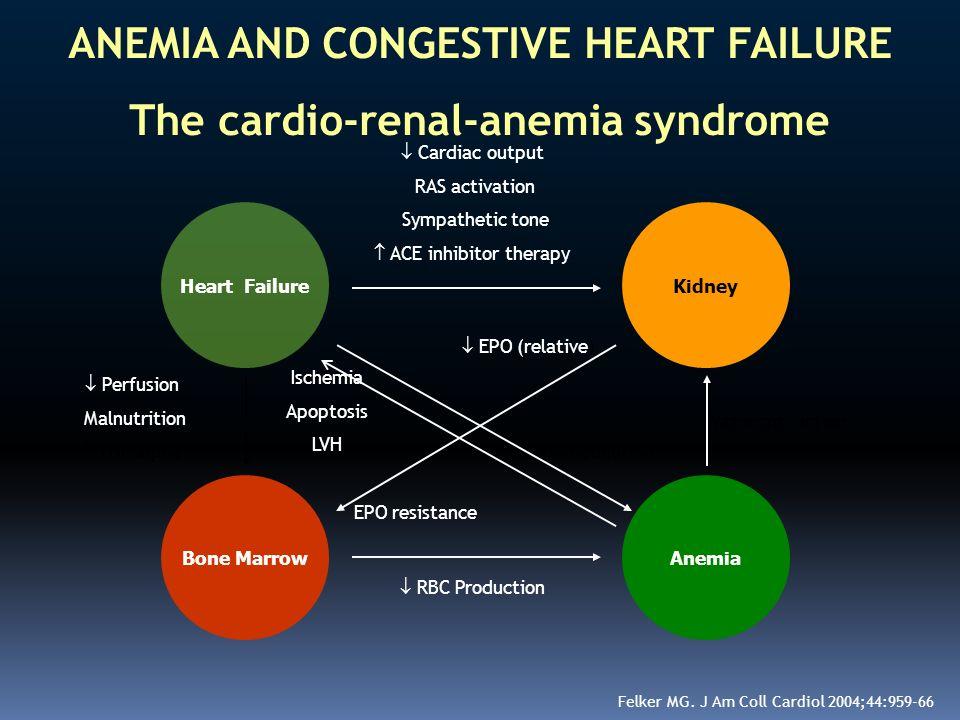 ANEMIA AND CONGESTIVE HEART FAILURE The cardio-renal-anemia syndrome Kidney Bone MarrowAnemia Heart Failure Cardiac output RAS activation Sympathetic