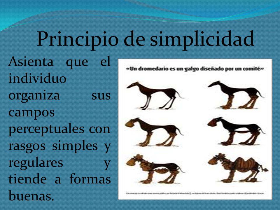 Principio de simplicidad Asienta que el individuo organiza sus campos perceptuales con rasgos simples y regulares y tiende a formas buenas.