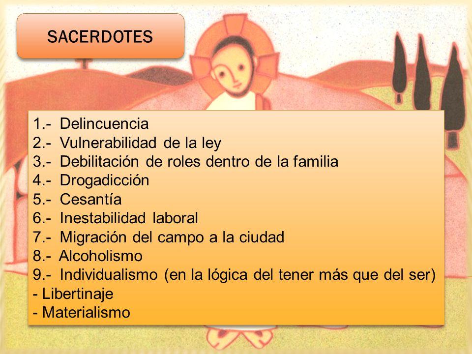1.- Delincuencia 2.- Vulnerabilidad de la ley 3.- Debilitación de roles dentro de la familia 4.- Drogadicción 5.- Cesantía 6.- Inestabilidad laboral 7