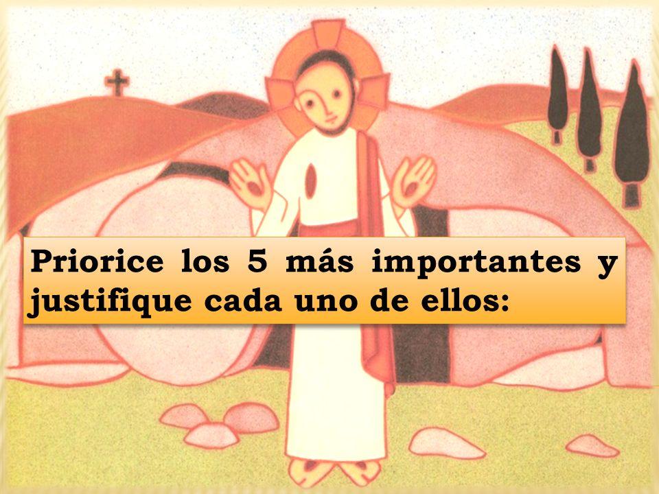 Priorice los 5 más importantes y justifique cada uno de ellos: