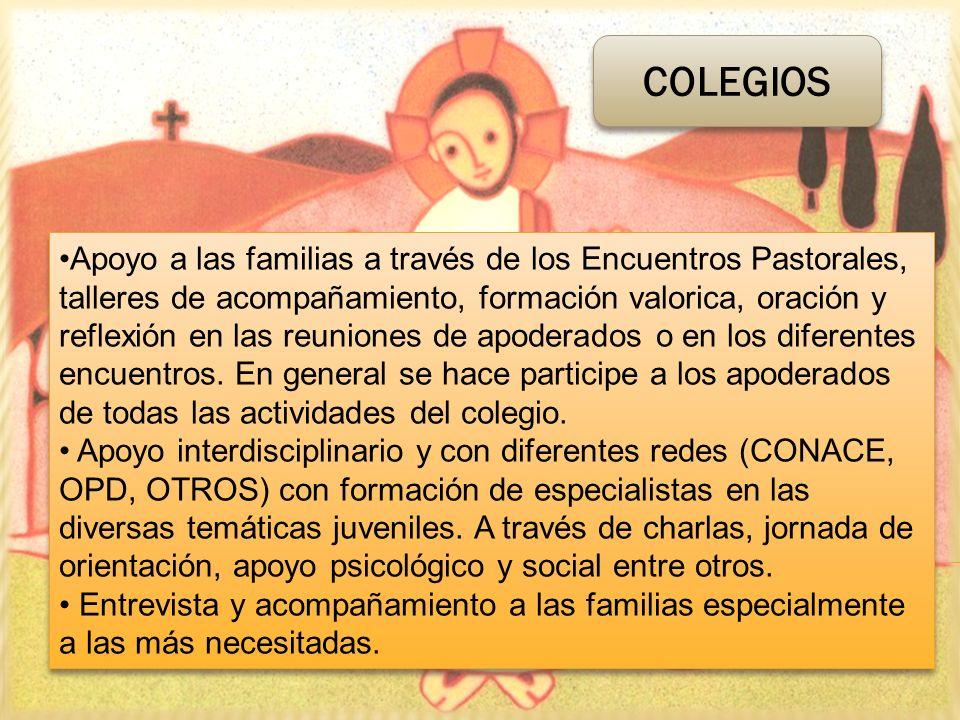 Apoyo a las familias a través de los Encuentros Pastorales, talleres de acompañamiento, formación valorica, oración y reflexión en las reuniones de ap