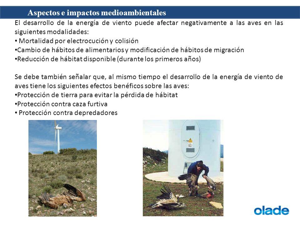 Aspectos e impactos medioambientales El desarrollo de la energía de viento puede afectar negativamente a las aves en las siguientes modalidades: Morta