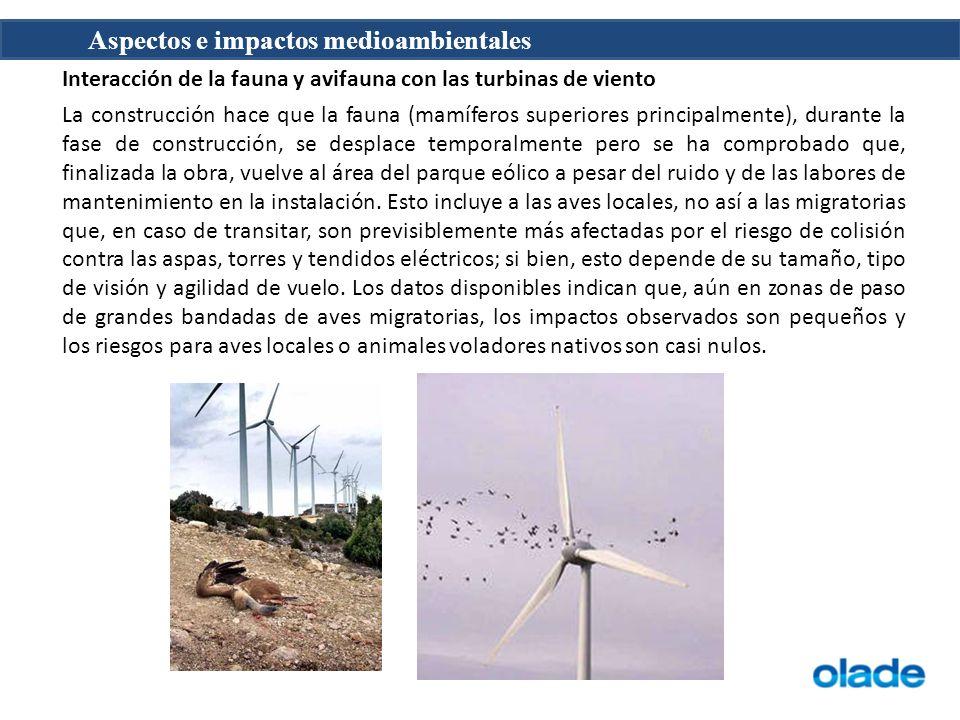 Aspectos e impactos medioambientales Interacción con la avifauna Las aves y los murciélagos puede colisionar con turbinas de viento, como lo hacen con cualquier estructuras en su ruta.