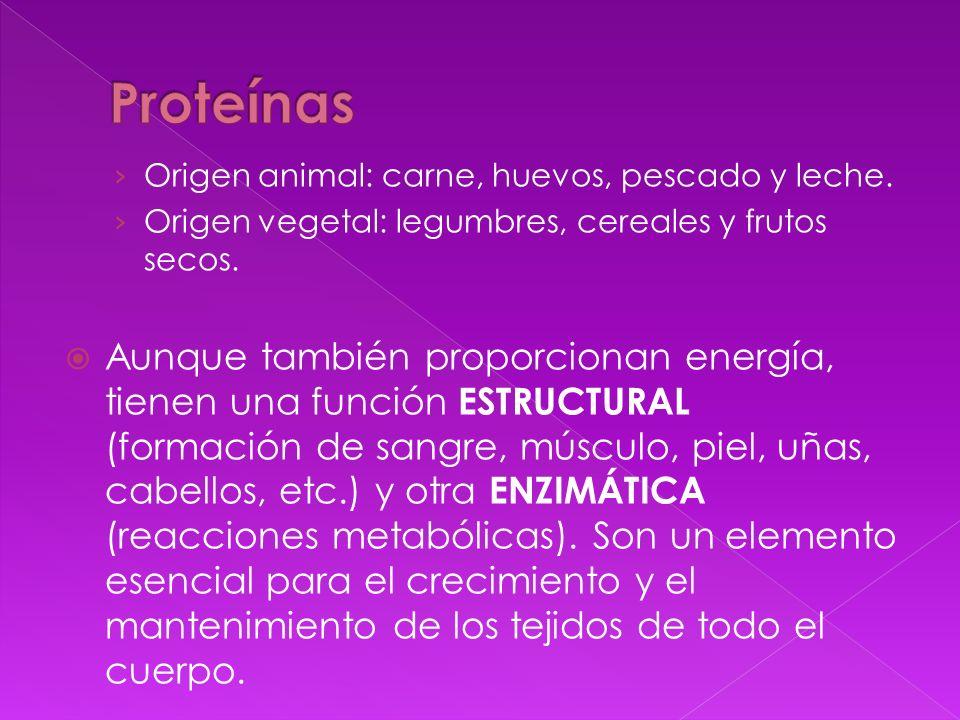 Origen animal: carne, huevos, pescado y leche. Origen vegetal: legumbres, cereales y frutos secos. Aunque también proporcionan energía, tienen una fun