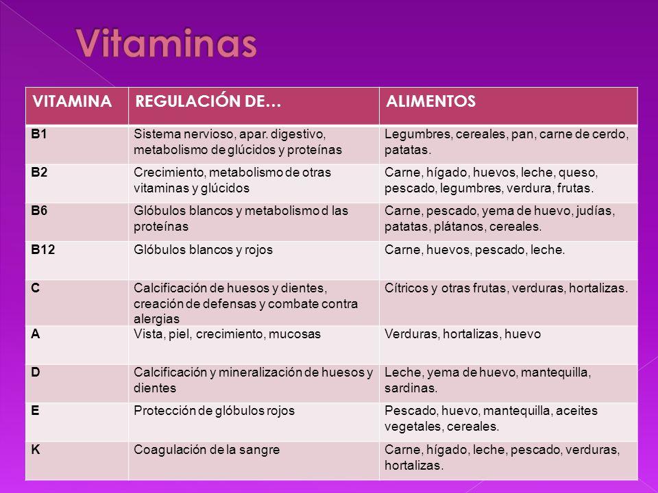 VITAMINAREGULACIÓN DE…ALIMENTOS B1Sistema nervioso, apar. digestivo, metabolismo de glúcidos y proteínas Legumbres, cereales, pan, carne de cerdo, pat