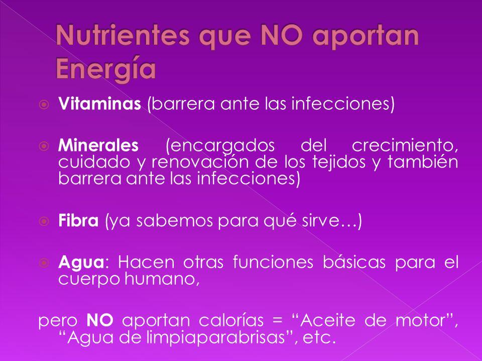 Vitaminas (barrera ante las infecciones) Minerales (encargados del crecimiento, cuidado y renovación de los tejidos y también barrera ante las infecci