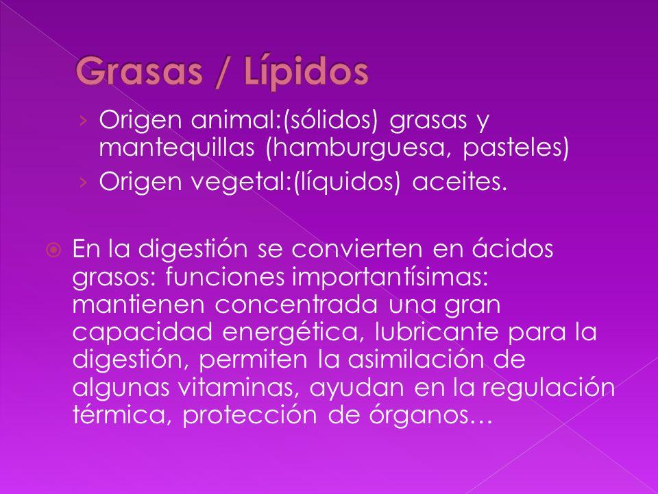 Origen animal:(sólidos) grasas y mantequillas (hamburguesa, pasteles) Origen vegetal:(líquidos) aceites. En la digestión se convierten en ácidos graso