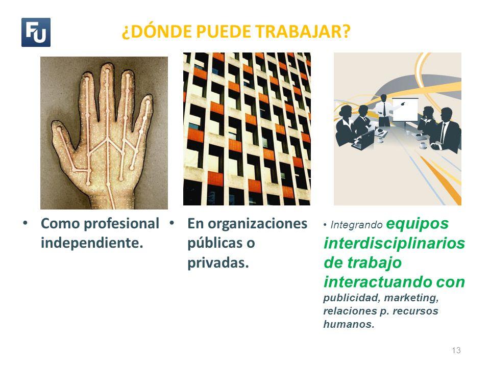 ¿DÓNDE PUEDE TRABAJAR? En organizaciones públicas o privadas. 13 Como profesional independiente. Integrando equipos interdisciplinarios de trabajo int