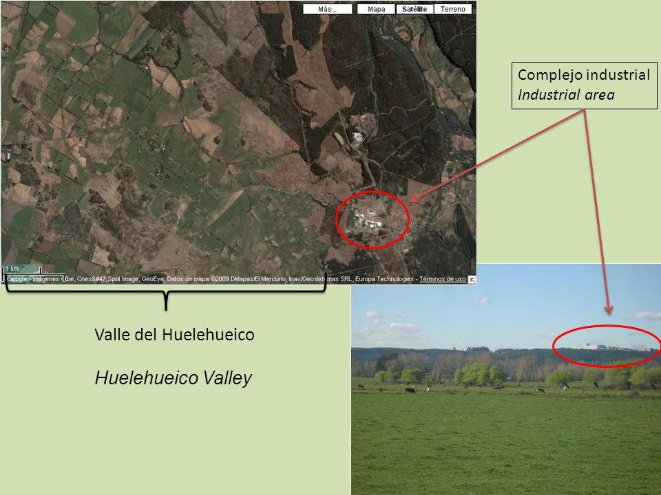 Complejo industrial Industrial area Valle del Huelehueico Huelehueico Valley