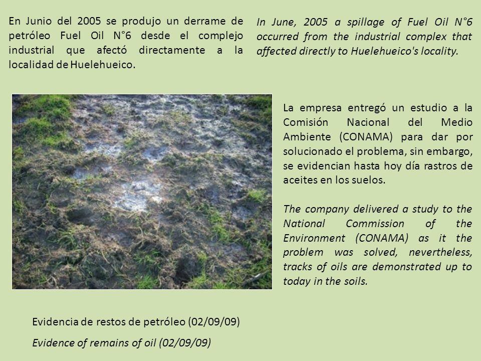 En Junio del 2005 se produjo un derrame de petróleo Fuel Oil N°6 desde el complejo industrial que afectó directamente a la localidad de Huelehueico.