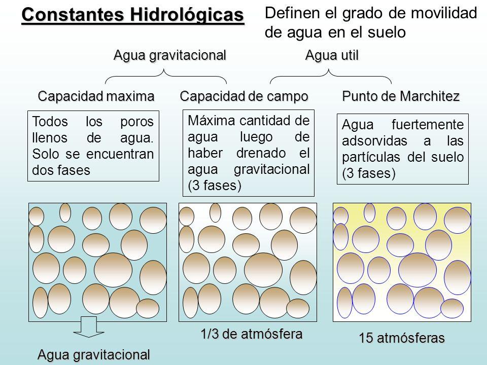 Constantes Hidrológicas Definen el grado de movilidad de agua en el suelo Capacidad maxima Capacidad de campo Punto de Marchitez Todos los poros lleno