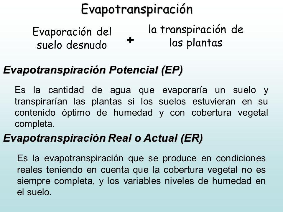 Evapotranspiración Evaporación del suelo desnudo Evapotranspiración Potencial (EP) Es la cantidad de agua que evaporaría un suelo y transpirarían las