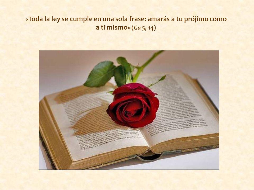 «Toda la ley se cumple en una sola frase: amarás a tu prójimo como a ti mismo» (Ga 5, 14)