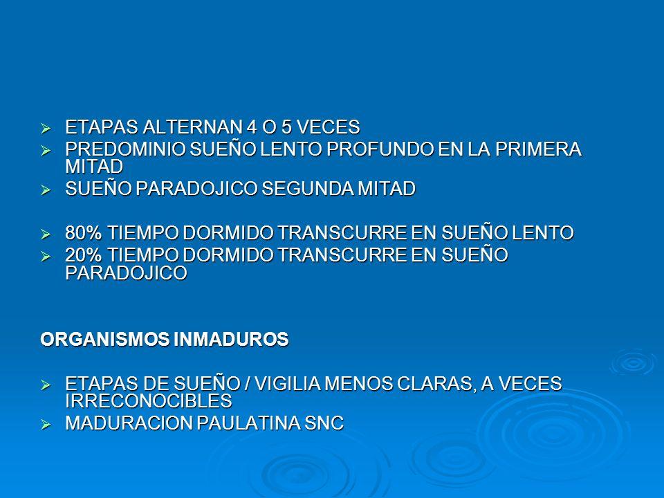 SUEÑO RN - LACTANTES 1 – 2 MESES SUEÑO LENTO: (SUEÑO TRANQUILO) NO ES POSIBLE DIFERENCIARLO AUN SUPERFICIAL / PROFUNDO NO ES POSIBLE DIFERENCIARLO AUN SUPERFICIAL / PROFUNDO NO ADQUIRIDO AUN HUSOS Y COMPLEJOS K NO ADQUIRIDO AUN HUSOS Y COMPLEJOS K EEG: MANTIENE TRAZADO DE MAYOR AMPLITUD Y MENOR FRECUENCIA QUE DURANTE SUEÑO PARADOJICO EEG: MANTIENE TRAZADO DE MAYOR AMPLITUD Y MENOR FRECUENCIA QUE DURANTE SUEÑO PARADOJICO AUSENCIA CONTRACCIONES MUSCULARES AUSENCIA CONTRACCIONES MUSCULARES VARIABLES CARDIORRESP.