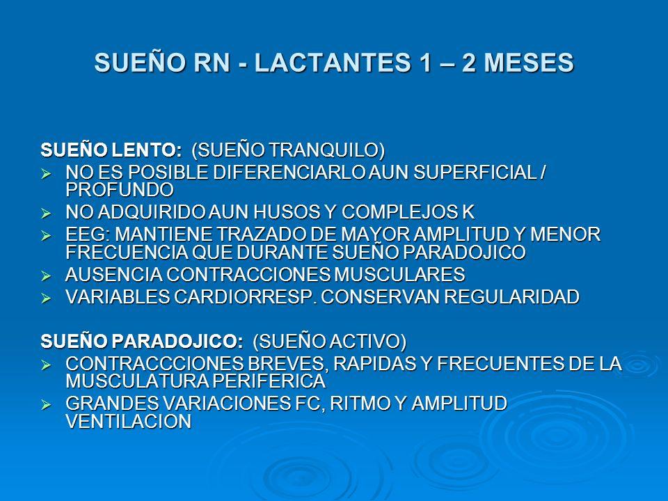SUEÑO RN - LACTANTES 1 – 2 MESES SUEÑO LENTO: (SUEÑO TRANQUILO) NO ES POSIBLE DIFERENCIARLO AUN SUPERFICIAL / PROFUNDO NO ES POSIBLE DIFERENCIARLO AUN