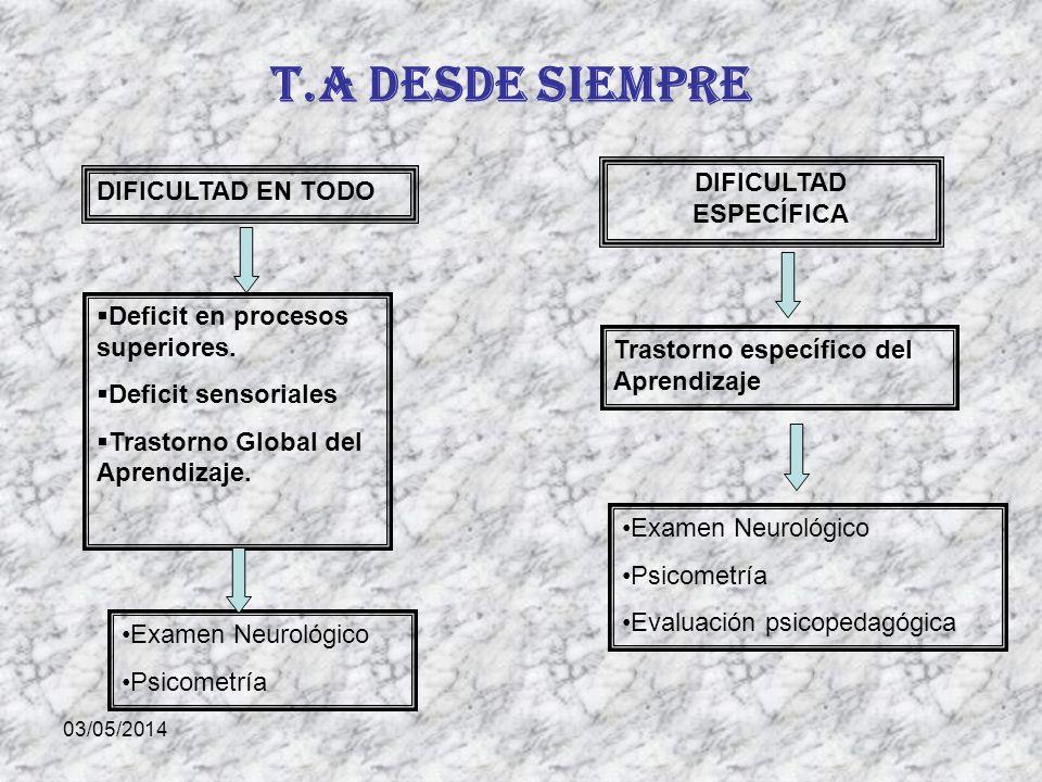 03/05/2014 T.A desde siempre DIFICULTAD EN TODO DIFICULTAD ESPECÍFICA Deficit en procesos superiores.