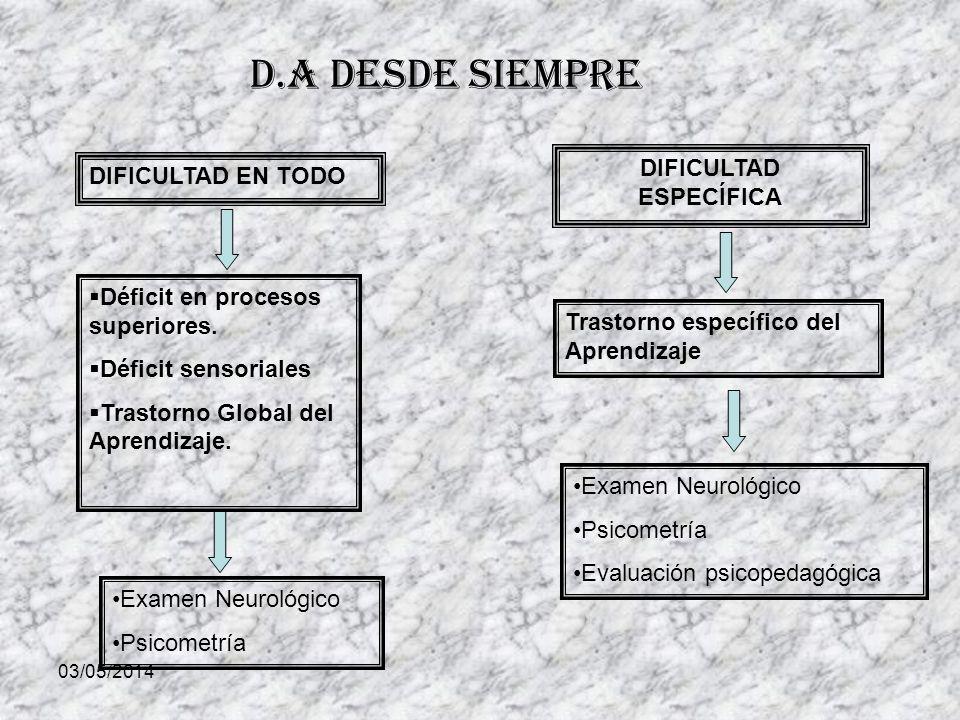 03/05/2014 D.A desde siempre DIFICULTAD EN TODO DIFICULTAD ESPECÍFICA Déficit en procesos superiores.