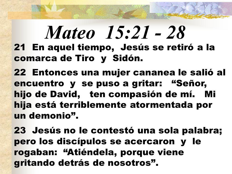 Mateo 15:21 - 28 21 En aquel tiempo, Jesús se retiró a la comarca de Tiro y Sidón. 22 Entonces una mujer cananea le salió al encuentro y se puso a gri