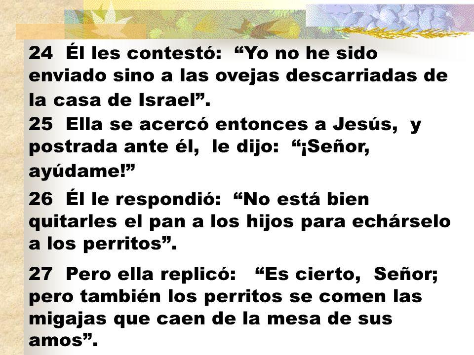 28 Entonces Jesús le respondió: Mujer, ¡qué grande es tu fe.