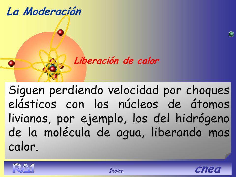 La Moderación Índice cnea Liberación de calor Siguen perdiendo velocidad por choques elásticos con los núcleos de átomos livianos, por ejemplo, los de