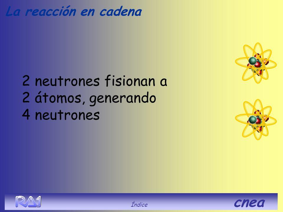 2 neutrones fisionan a 2 átomos, generando 4 neutrones La reacción en cadena Índice cnea