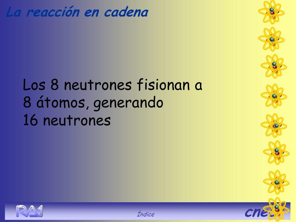 Índice cnea Los 8 neutrones fisionan a 8 átomos, generando 16 neutrones La reacción en cadena