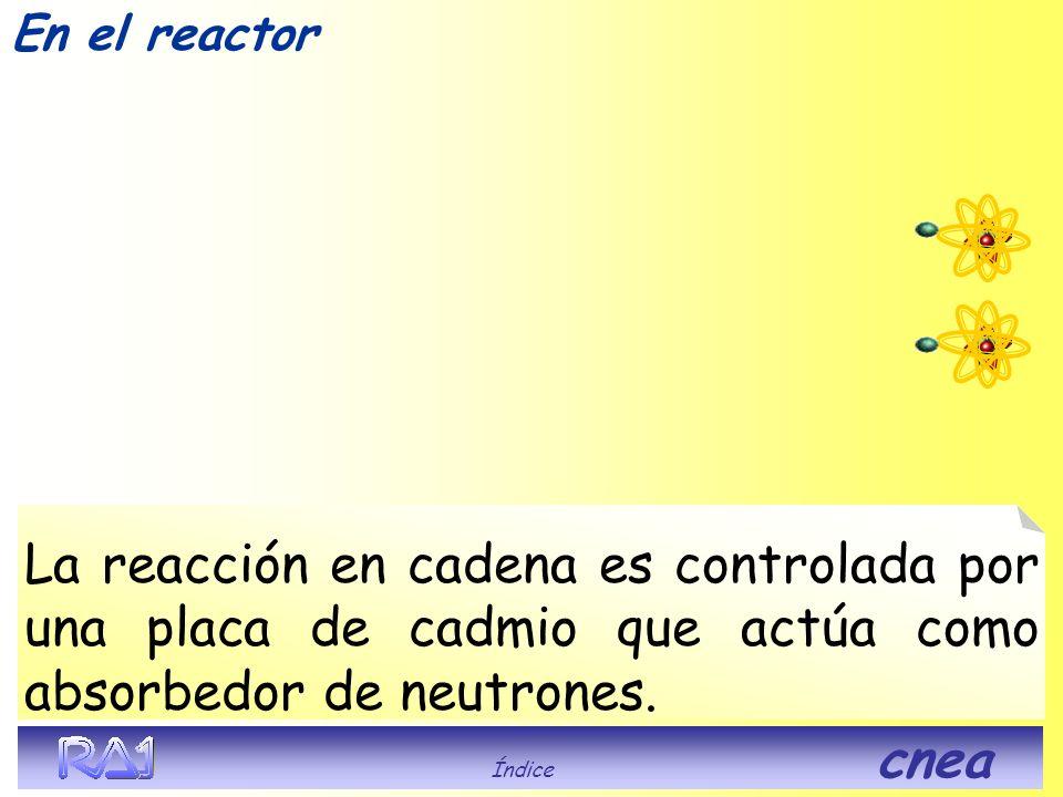 En el reactor ¿Que pasa en? Índice cnea