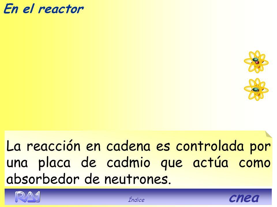 En el reactor Índice cnea La reacción en cadena es controlada por una placa de cadmio que actúa como absorbedor de neutrones.