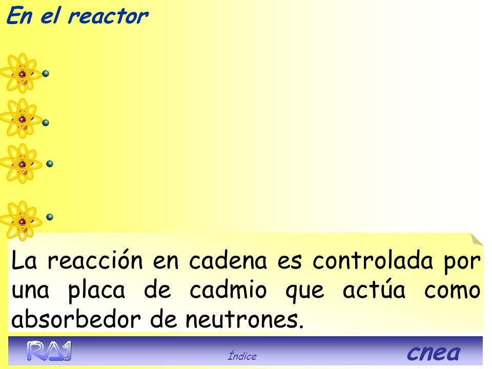 En el reactor Índice cnea