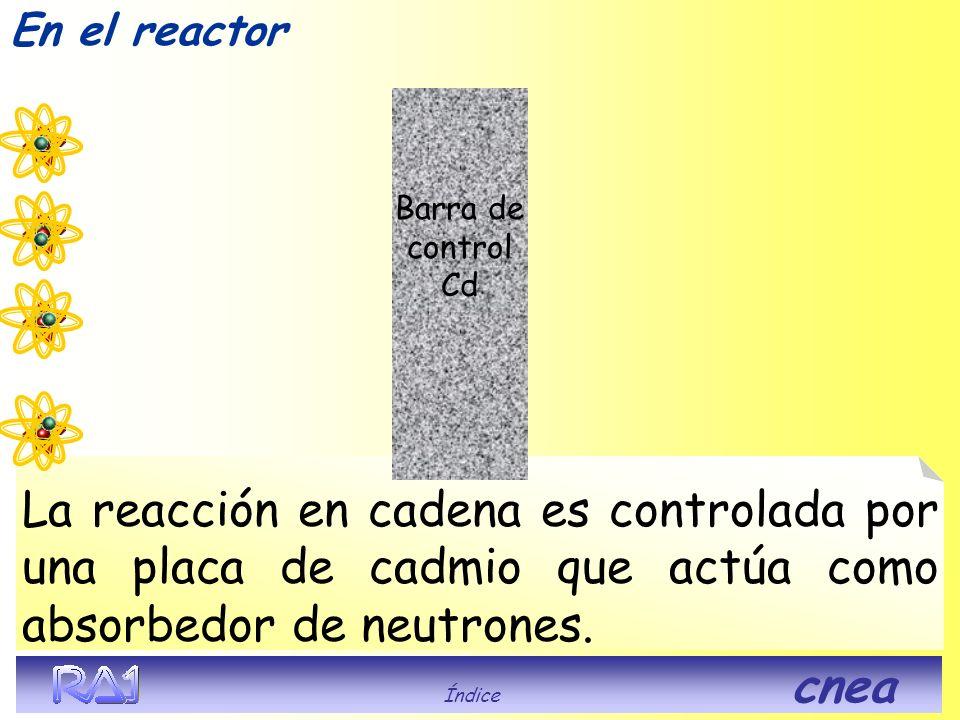 La reacción en cadena es controlada por una placa de cadmio que actúa como absorbedor de neutrones. En el reactor Índice cnea
