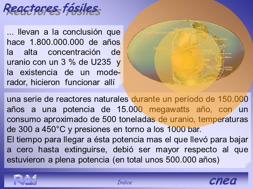 Reactores fósiles AFRICA GABON Índice cnea En 1972 los franceses comprobaron que el uranio proveniente de las minas de Oklo, Gabón, tenía un porcentaj