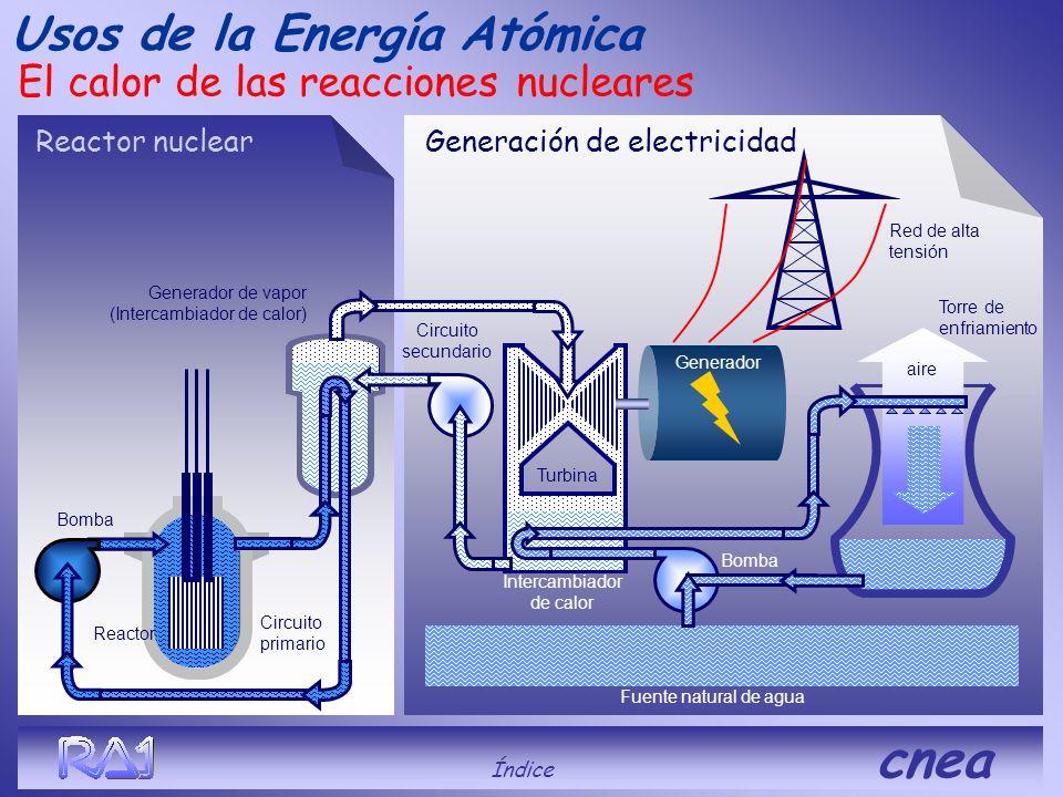 Con el calor liberado en las reacciones nucleares se genera vapor de agua para mover turbinas que accionan generadores de energía eléctrica en central