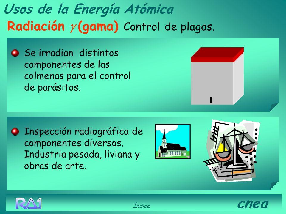 Usos de la Energía Atómica Radiación (gama) Índice cnea Irradiación de tumores. Esterilización de alimentos (mejora su conservación) Esterilización de