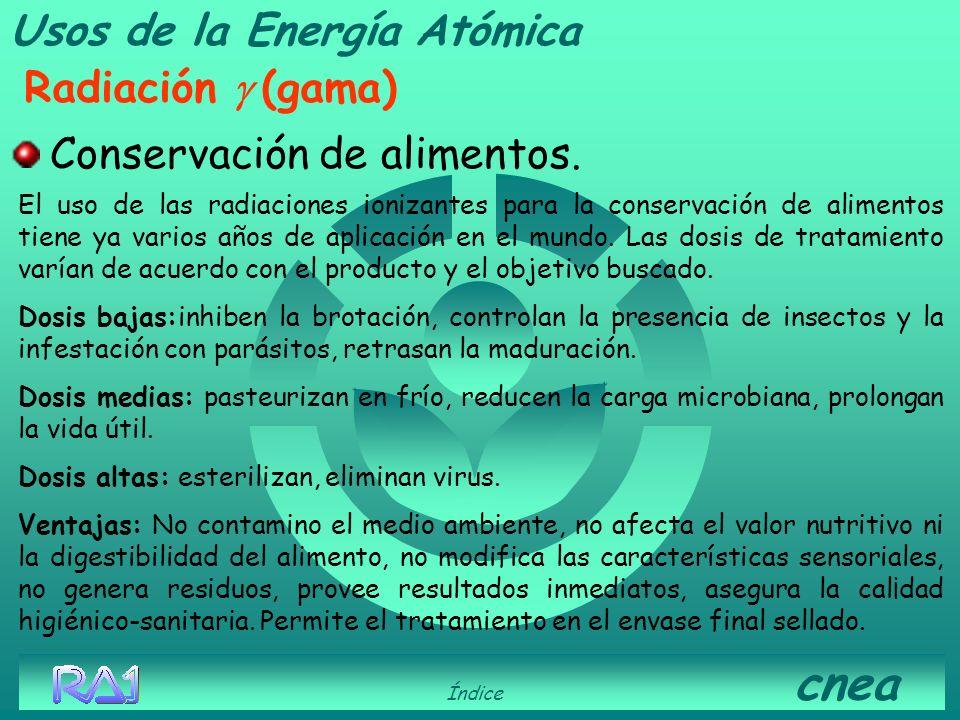 Usos de la Energía Atómica Radiación (gamma) Control de plagas. Índice cnea Técnica del Insecto Estéril. Se esterilizan por radiación gama a crisálida