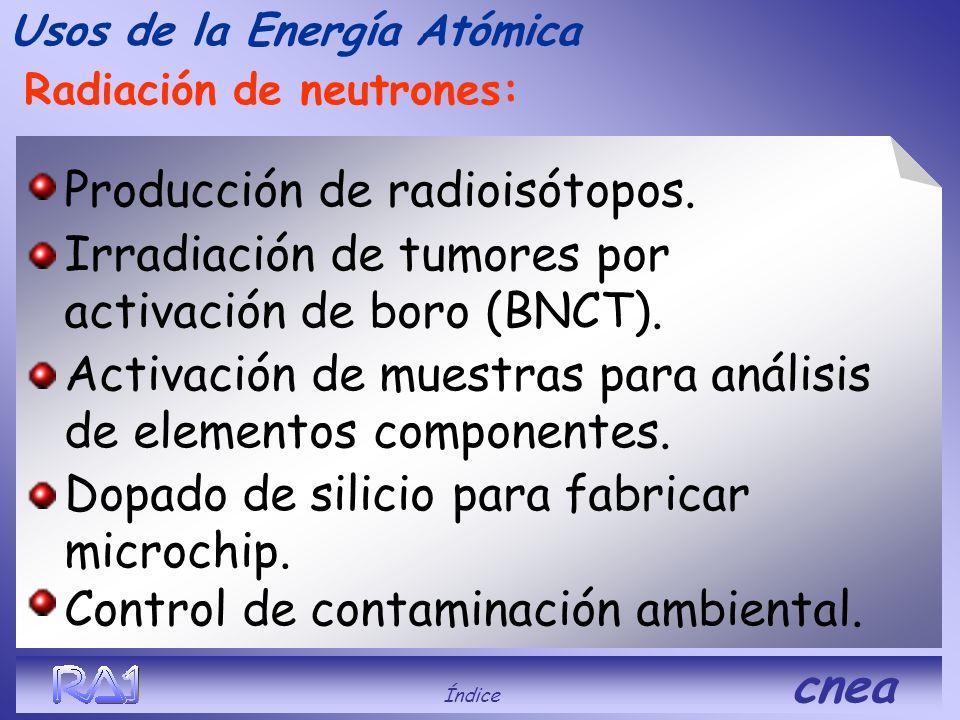 Usos de la Energía Atómica Índice cnea Conservación de alimentos. El uso de las radiaciones ionizantes para la conservación de alimentos tiene ya vari