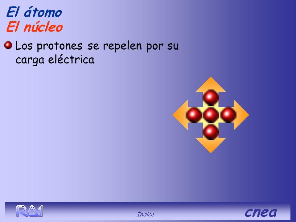 El átomo Índice cnea Sumados a los protones dan el número másico (A) que determina el isótopo del elemento. U235 A = 92 protones + 143 neutrones Los n