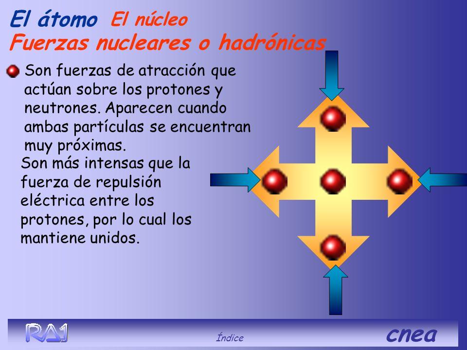 El átomo Los protones se repelen por su carga eléctrica El núcleo Índice cnea