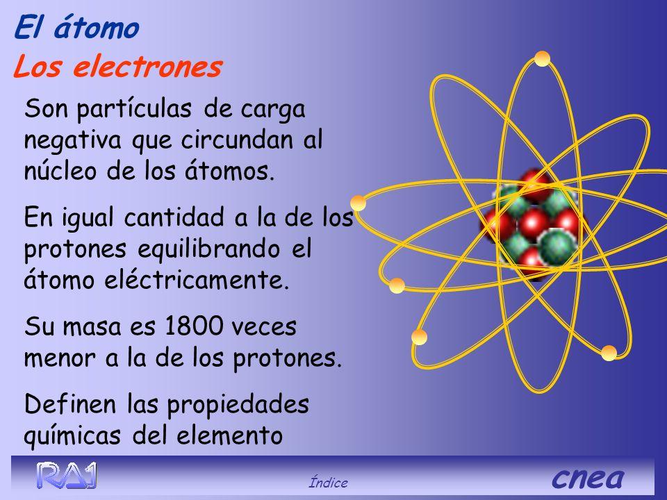 Fuerzas nucleares o hadrónicas El átomo Los neutrones, que carecen de carga eléctrica contribuyen a hacer más estable el núcleo. Son más intensas que