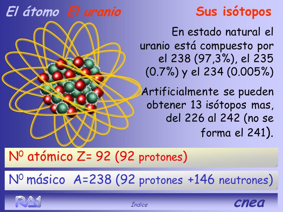 N o Atómico (no varía) N o de Masa (aumenta) Sus isótopos El hidrógeno H1 (hidrógeno) Z = 1 A = 1 (1 protón) H2 (deuterio) Z = 1 A = 2 (1 protón + 1 n