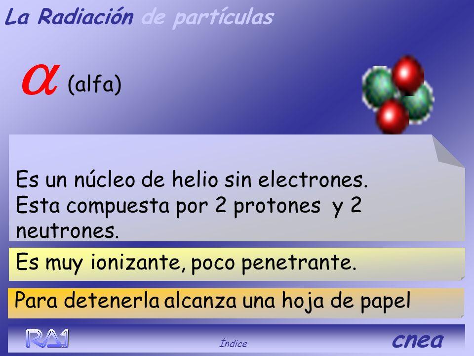 La Radiación de partículas Neutrones Índice cnea Produce activación o fisión, es penetrantes Son partículas sin carga que forman parte del núcleo de l