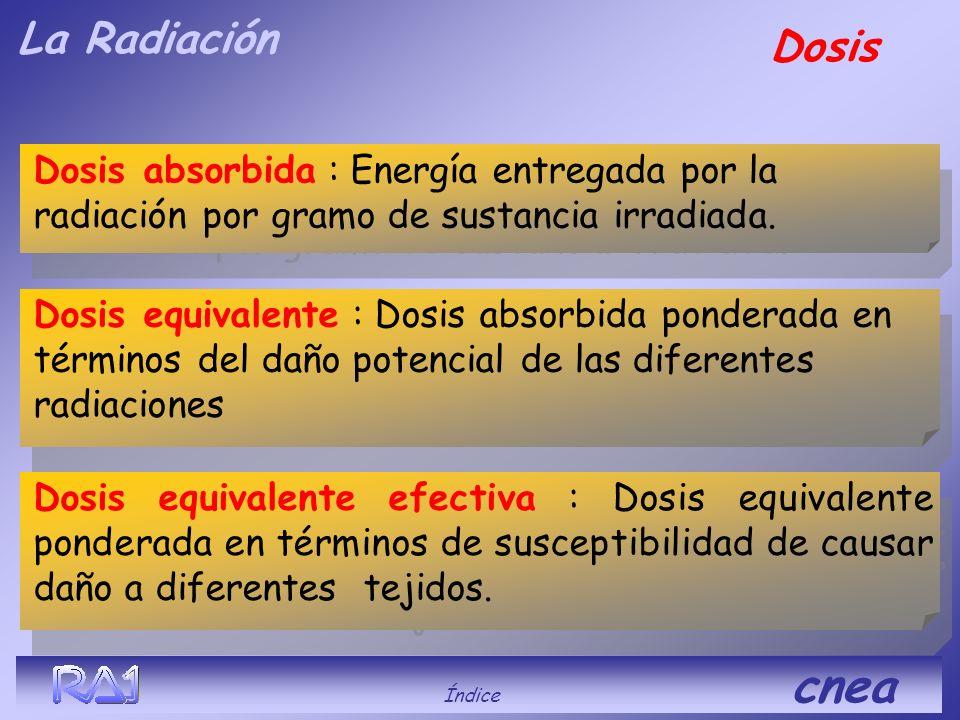 La RadiaciónDaños Índice cnea Es la energía de la radiación que es absorbida, la que produce el daño en los tejidos. El daño depende del tipo de radia