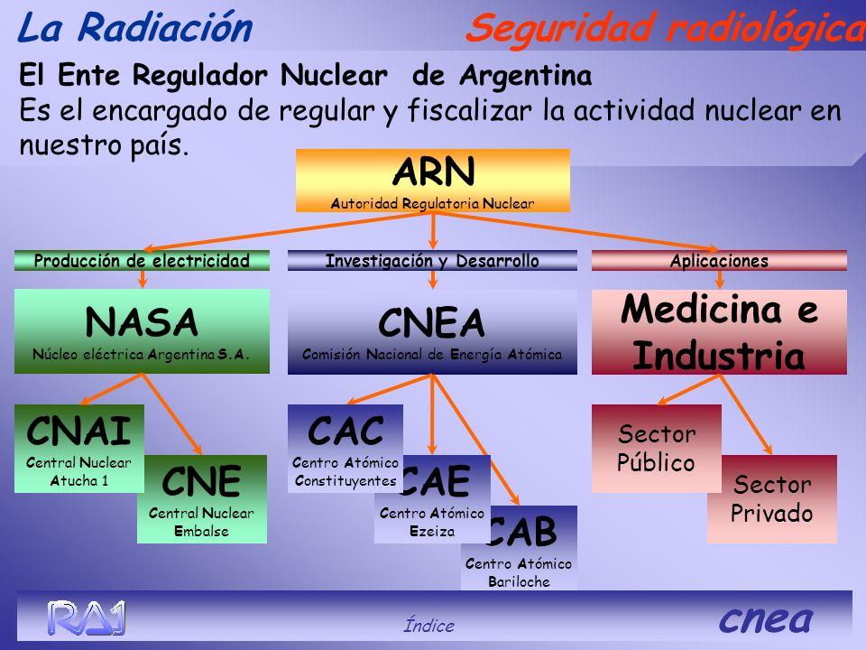 La Radiación Unidades Índice cnea Becquerel (Bq) : Equivale a una desintegración por segundo de cualquier radionucleido. Gray (Gy) : Cantidad de energ