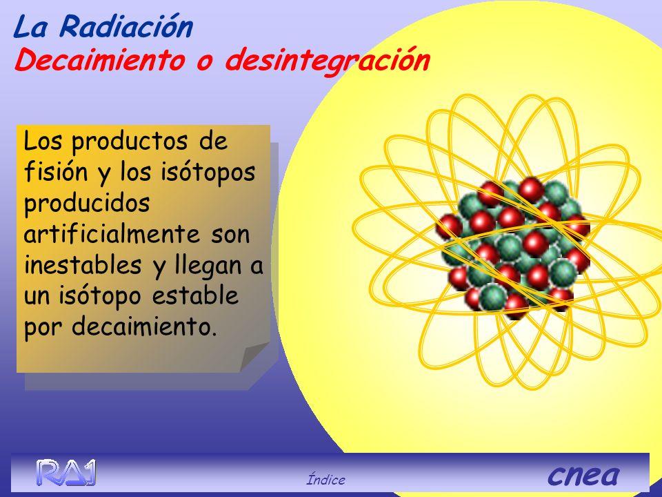 La Radiación Decaimiento o desintegración Índice cnea De los isótopos de Z muy grande, solo unos pocos son estables, la mayoría son inestables debido