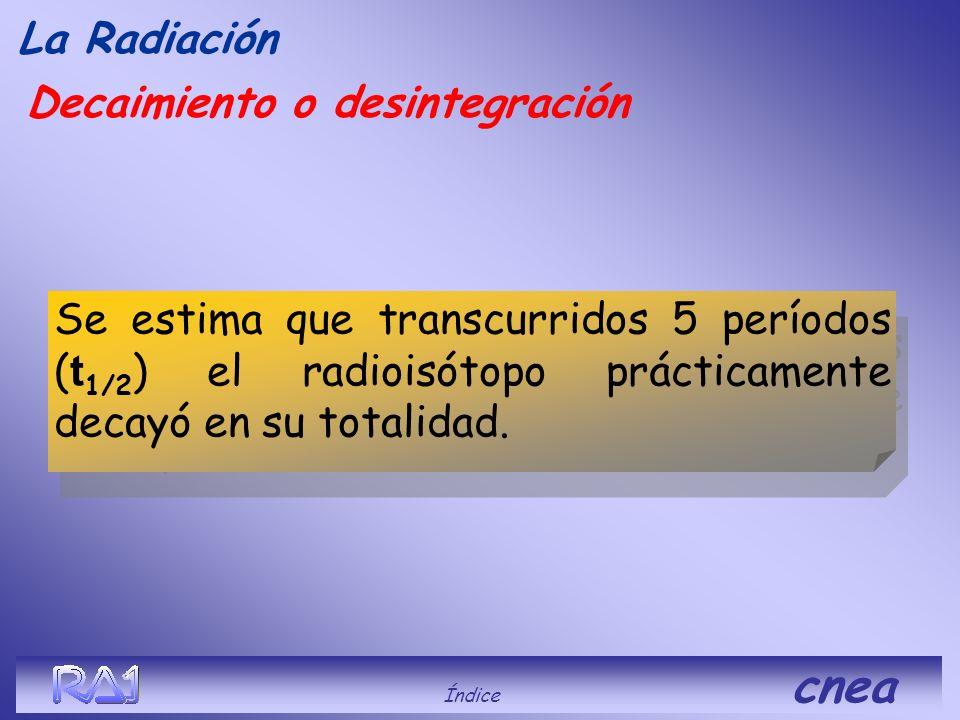 Decaimiento o desintegración La Radiación período de desintegración radioisótopo Radioisótopo Isótopo hijo Índice cnea Vida media o período de desinte