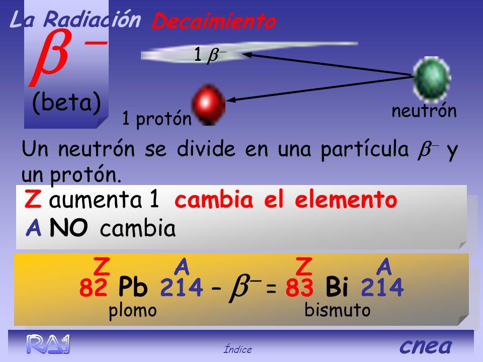 (alfa) 2 protones La Radiación 2 neutrones. 92 U 238 - = 90 Th 234 Z A uranio torio Decaimiento Índice cnea Z disminuye 2 cambia el elemento A disminu