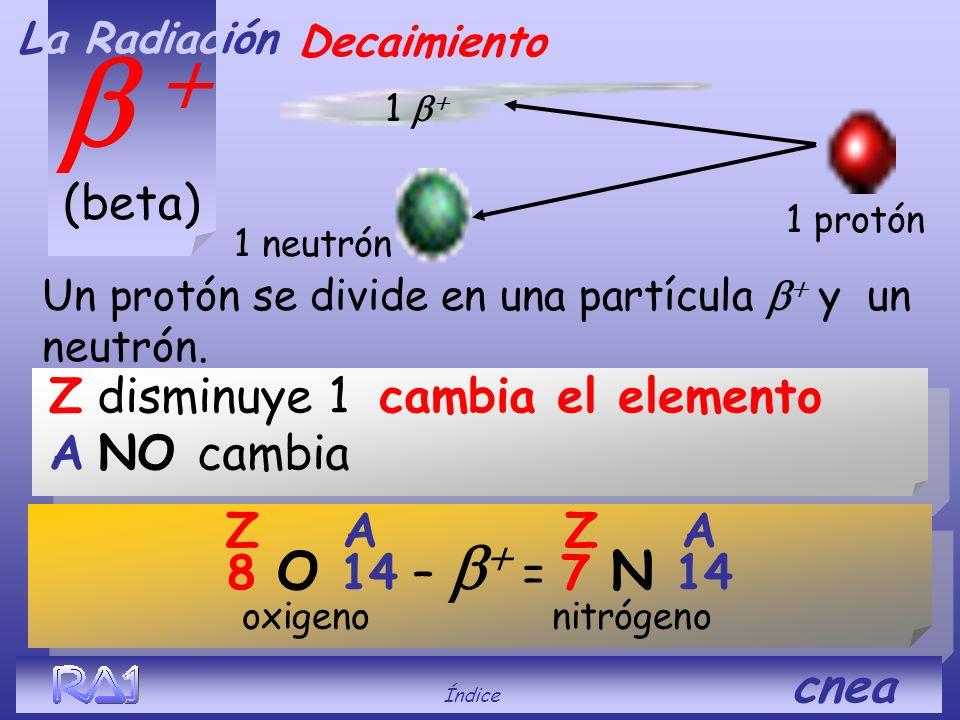 Z aumenta 1 cambia el elemento A NO cambia (beta) Decaimiento Un neutrón se divide en una partícula y un protón. La Radiación 1 protón neutrón 1 82 Pb