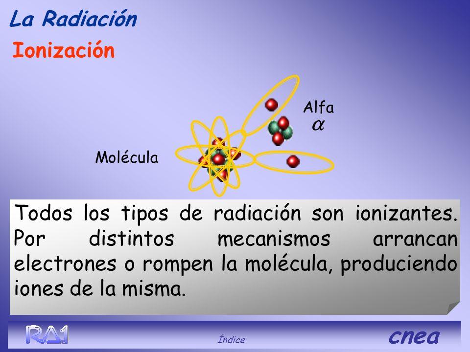 Ionización La Radiación Índice cnea Los electrones son muy fáciles de arrancar, con solo frotar una regla de plástico con un paño se ioniza y atrae tr